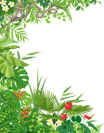 Bunte Blätter und Blumen des Hintergrundes der tropischen Anlagen mit Platz für Text. Vertikale Seitenleiste aus Monstera, Farn, Palmwedel, Lianenäste. Tropischer Regenwald-Laub-Rahmen. Vektorgrafik