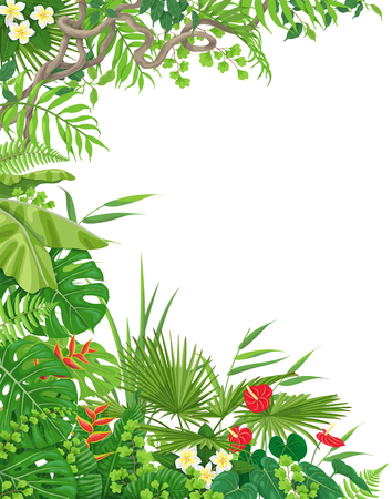 Colorful leaves and flowers of tropical plants background with space for text. Vertical side border made with monstera, fern, palm fronds, liana branches. Tropic rainforest foliage frame.