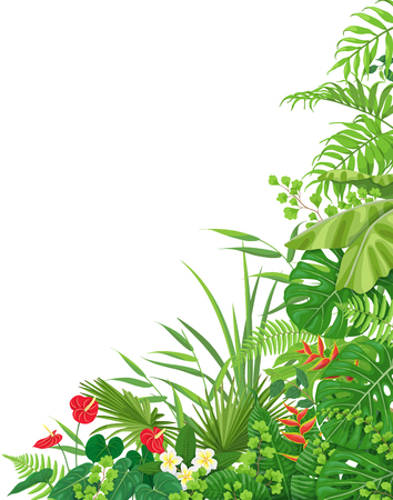 Colorful leaves and flowers of tropical plants  floral background with space for text. Vertical side corner border made with monstera, fern, palm fronds. Tropic rainforest foliage.