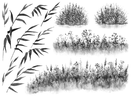 Watercolor painting. Hand drawn illustration. Set of monochrome reed branches, cane thicket and grass.   Nature scene design element. 스톡 콘텐츠