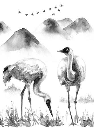 水彩画。 ●手描きのイラスト。山の背景にカップルシベリアクレーン。 鳥を振り渡す静寂のシーン。霧の中で雪の頂上を持つモノクロの丘や山々。
