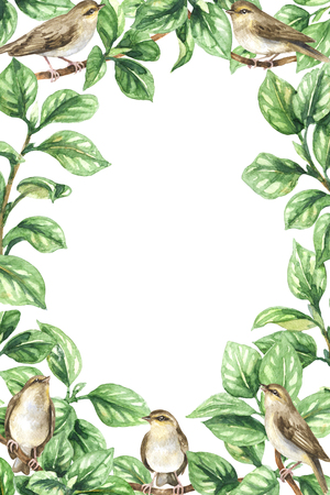 Watercolor painting.  Hand drawn vertical rectangle frame made with  songbirds, tree branches  and  green leaves. Floral decorative border with plants and  forest birds. Фото со стока