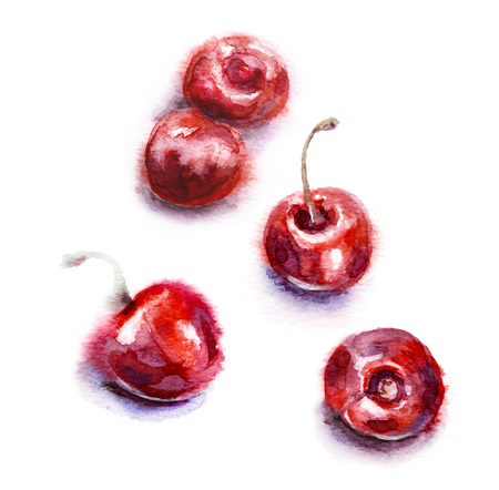 Hand drawn food illustration. Watercolor red sweet cherries isolated on white background. Aquarelle sketch in wet technique. Reklamní fotografie