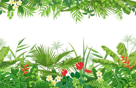 白い背景にカラフルな葉や熱帯植物の花で作られた水平線花シームレスなパターン。熱帯熱帯雨林の葉の国境。