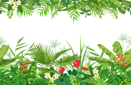 Horizontal line floral seamless pattern made with colorful leaves and flowers of tropical plants on white background. Tropic rain forest foliage border. Иллюстрация