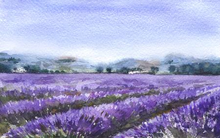Peinture à l'aquarelle. Scène de sérénité dessiné main avec champ de lavande en fleurs. Croquis de paysage nature. Banque d'images - 94442347