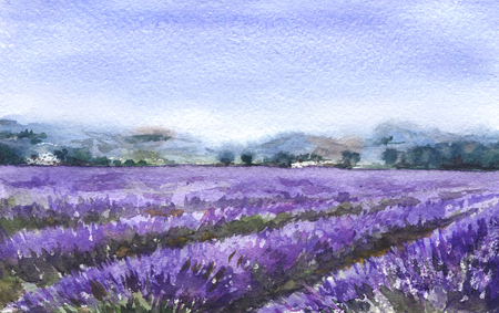 Watercolor Painting.  Hand drawn serenity scene with blooming lavender field. Nature landscape sketch.