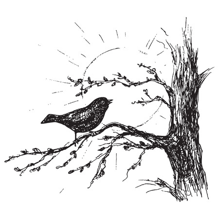 Hand drawn songbird sitting on tree branch. Spring is coming illustration.Black and white singing bird and sun vector sketch.