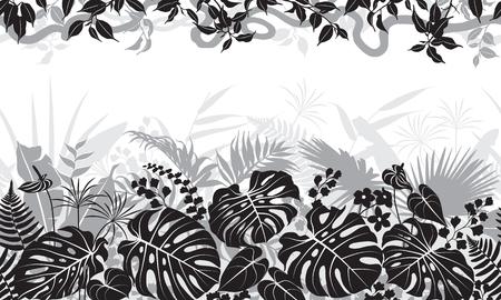 熱帯の葉、リアナと花のシルエットとシームレスなライン水平パターン。上部とベース列に植物と黒、灰色と白の花のテクスチャ。モノクロ ベクト  イラスト・ベクター素材