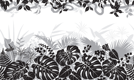 Seamless line horizontal pattern with tropical leaves, liana and flowers silhouette. Black, gray and white floral texture with plants in top and base row. Monochrome vector flat illustration.