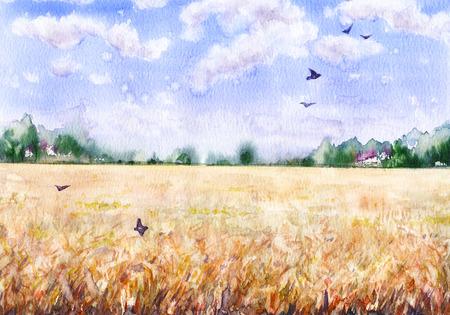 手描き水彩画。自然の風景。 小麦畑、雲、木々、空飛ぶ鳥と夏の農村のシーン。