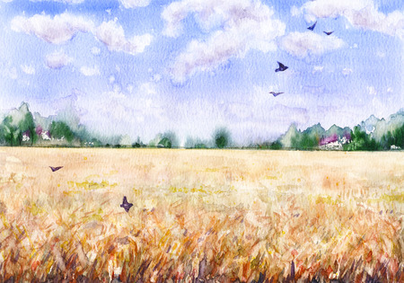 Hand drawn watercolor illustration. Nature landscape.  Summer rural scene with  wheat field, clouds, trees and flying birds. 스톡 콘텐츠