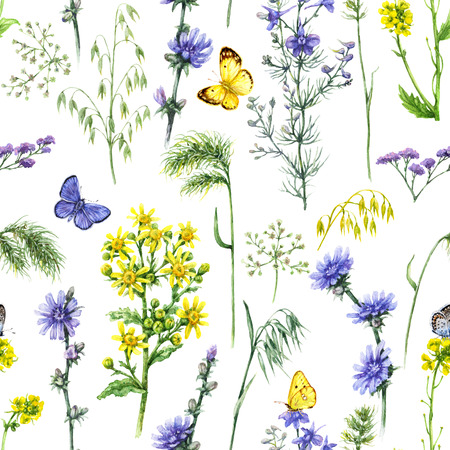 Hand drawn floral seamless pattern made with watercolor blue and yellow wildflowers and butterflies. Summer flowers, flying and sitting insects on white background.