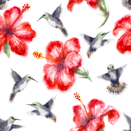 Watercolor painting.  Seamless pattern made with hand drawn humming birds and flower on white background. Small hummingbirds flying near red hibiscus.  Aquarelle sketch in wet technique.