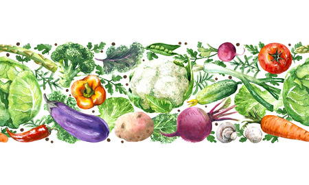 Hand drawn raw food illustration. Horizontal seamless pattern made with watercolor vegetables. Set of organic products. Cabbages, greens, tomato, eggplant, beet, carrot in row on white background.
