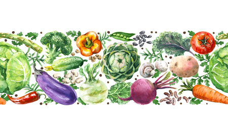 Hand drawn raw food illustration. Horizontal seamless pattern with watercolor vegetables. Set of organic products. Cabbages, greens, tomato, eggplant, asparagus, potato in row on white background