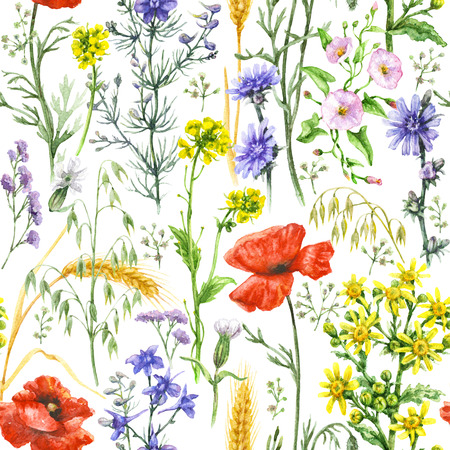 Hand drawn floral seamless pattern made with watercolor wildflowers, red poppies and ripe wheat ears. Summer flowers and cereal plants on white background.
