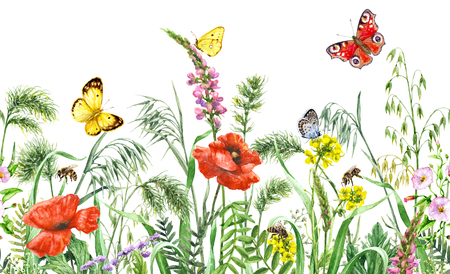 Hand drawn floral horizontal seamless border with watercolor wildflowers, red poppies, bees and butterflies. Summer pattern with melliferous flowers, flying and sitting insects on white background.