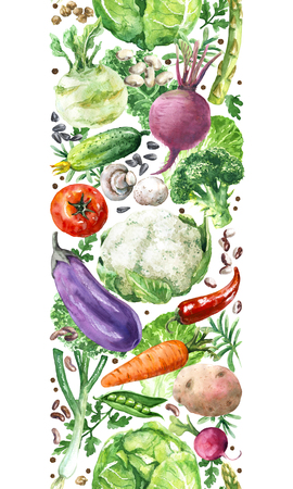 Hand drawn raw food illustration. Vertical seamless pattern made with watercolor vegetables. Set of organic products. Cabbages, greens, tomato, eggplant, beet, carrot in row on white background.