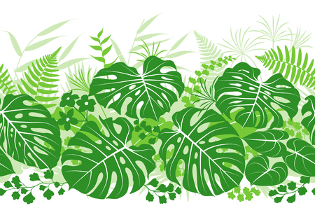 Seamless line horizontal pattern made with tropical plants silhouette. Green  floral texture with leaves in row. Vector flat illustration.
