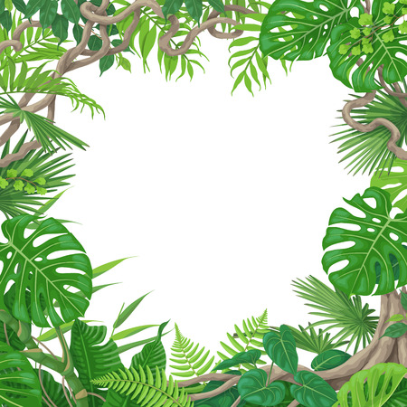 Summer background with green leaves of tropical plants and liana branches. Jungle frame with space for text. Tropic rainforest foliage border. Vector flat illustration. Stock Illustratie