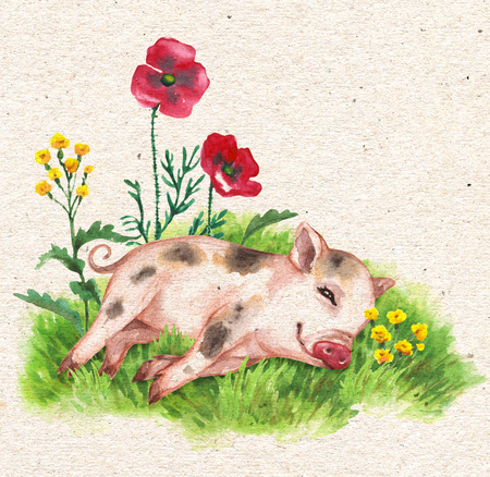Hand drawn cute miniature pig resting on green grass near wildflowers. Vintage card with watercolor flowers and funny animal. Stockfoto