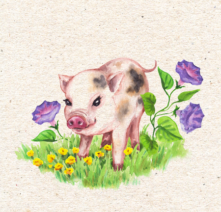 Hand drawn cute miniature pig walking on green grass near wildflowers. Vintage card with watercolor yellow, lilac flowers and funny animal.