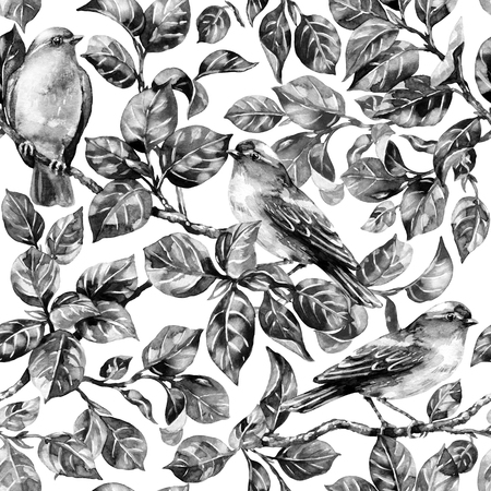 Watercolor painting. Seamless pattern made with hand drawn monochrome forest birds sitting on tree branches. Black and white endless texture with songbirds.