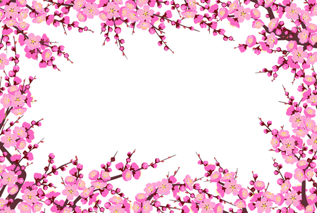 Rectangle horizontal frame made with flowering tree branches and shoots with pink flowers on white background.  Plum blossom is a symbol for spring. Floral decoration for Chinese New Year.