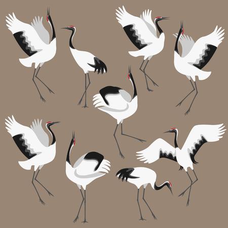 Uproszczony obraz tańczących bocianów japońskich na kolorowym tle. Żurawie koronowane poruszają się w tańcu. Płaskie ilustracja grupy ptaków.