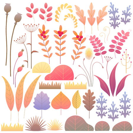 Colorful leaves, dried grass, berries and bushes set. Simple autumn floral elements design isolated on white. Vector flat illustration. Illustration