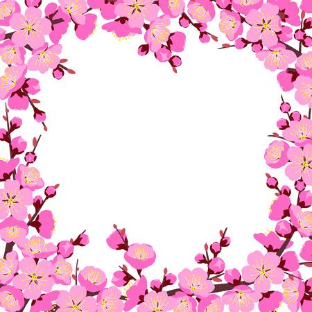 Frühlingshintergrund mit blühenden Baumasten und rosa Blumen auf Weiß. Quadratischer Rand aus Pflaumenblüten. Blumendekoration für Hochzeit, Chinesisches Neujahr, Frühlingsfeiern.