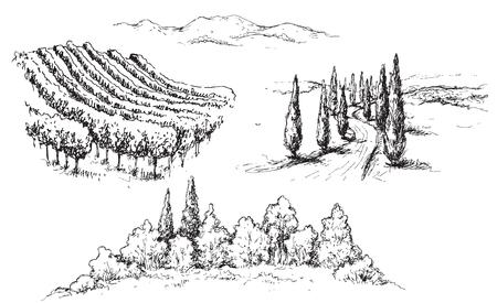 Frammenti di scena rurale disegnati a mano con vigneto, colline, strada e alberi. Illustrazione di paesaggio rustico monocromatico. Abbozzo di vettore. Vettoriali
