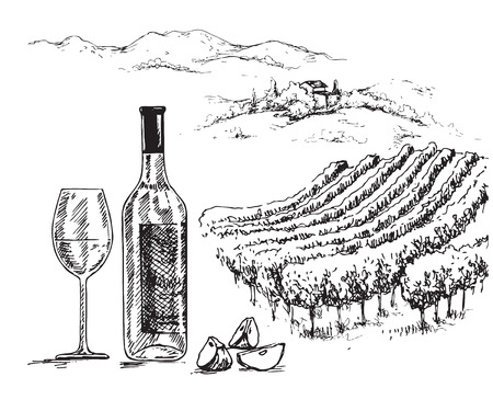 Hand drawn bottle and glass of wine on rural scene background with vineyard. Monochrome rustic landscape illustration. Vector sketch.