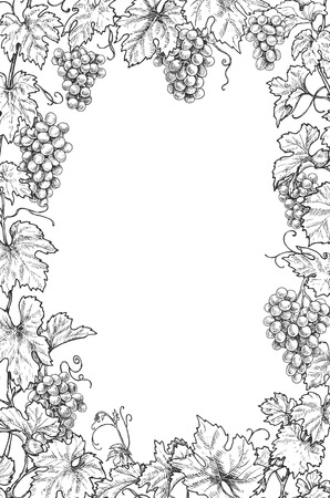 Monochrome rectangle vertical frame made with grapes branches and berries.  Hand drawn grape bunches and leaves. Black and white border with space for text. Vector sketch.