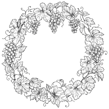 Monochrome round frame made with grapes branches and berries.  Hand drawn grape bunches and leaves. Black and white border with space for text. Vector sketch. Stok Fotoğraf - 108775065