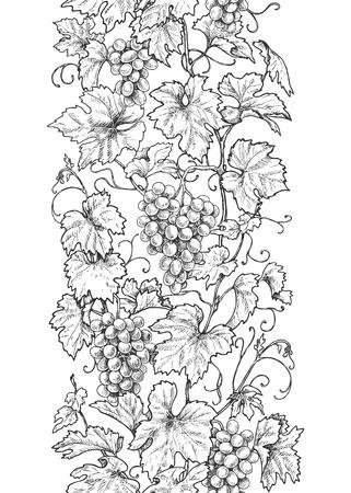 Motif vertical de ligne transparente fait de branches de raisin monochromes avec des feuilles et des baies. Bordure noire et blanche dessinée à la main avec des raisins en rangée. Croquis de vecteur.