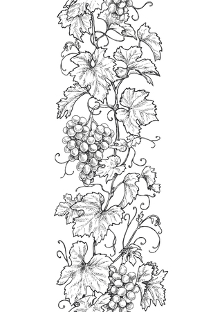 Vertical seamless pattern made with monochrome grape branches with leaves and berries. Hand drawn black and white line border with grapes in row. Vector sketch.