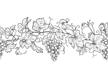 Horizontal seamless pattern made with monochrome grape branches with leaves and berries. Hand drawn black and white line border with grapes in row. Vector sketch.