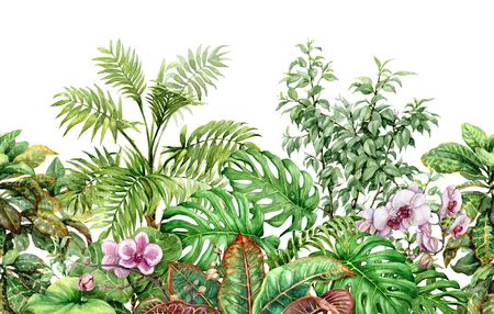 Hand drawn flowers and leaves of tropical plants. Seamless line horizontal pattern made with watercolor exotic green rainforest foliage and pink orchid on white background. Endless floral border.