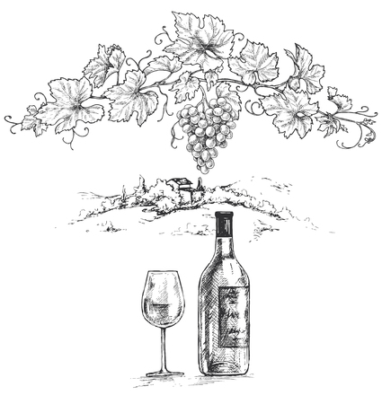 Hand drawn grape branch, wine bottle and glass on rural scene background. Monochrome vector sketch.