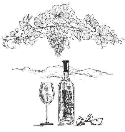 Ramo d'uva disegnato a mano, torte di mela, bottiglia e bicchiere di vino su sfondo bianco. Abbozzo di vettore monocromatico. Vettoriali
