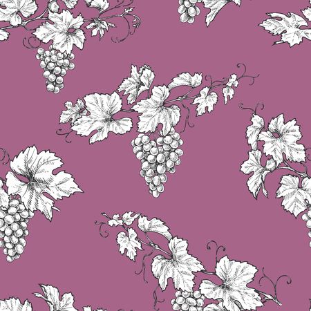 Seamless pattern made with monochrome hand drawn grape branches on pink background. Black and white leaves and berries of grapes  vector sketch. Illustration