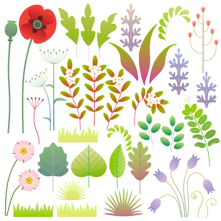 Colorful green leaves, grass and flowers set. Simple springtime and floral elements design isolated on white. Vector flat illustration.