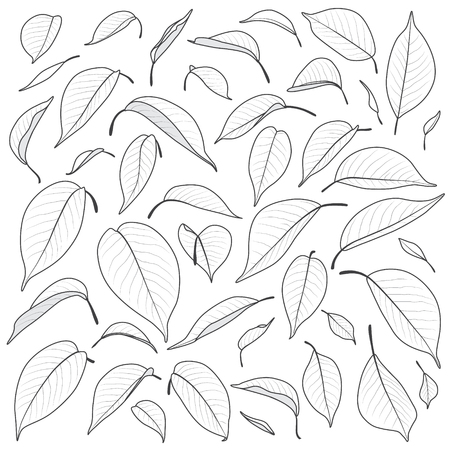Monochrome leaf set. Simplified big and small leaves isolated on white. Outline natural elements vector illustration.