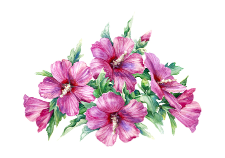 Watercolor painting. Hand drawn floral bunch with pink flower on white background. Bouquet of syrian hibiscus.