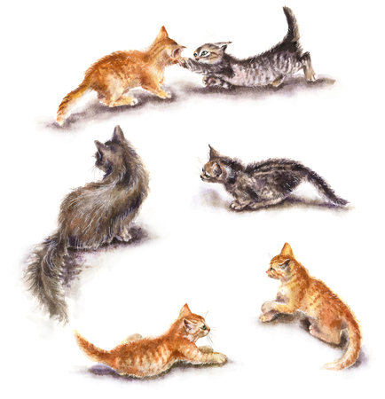 Watercolor painting.  Hand drawn set of cats isolated on white. Funny ginger and gray kittens playing near mom cat. Aquarelle sketch of pet motion in game.