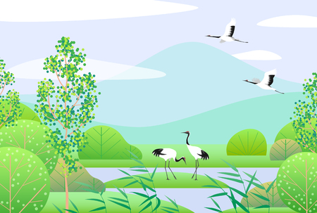 Nature background with wetland scene and Japanese cranes. Spring landscape with mountains, green trees, reed and birds. Vector flat illustration.
