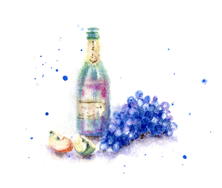Hand drawn bottle of red wine and blue grape bunch. Watercolor sketch in wet technique.
