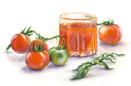Hand drawn glass of tomato juice and bunch with red and green tomatoes. Watercolor sketch.   Фото со стока